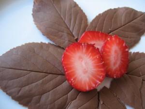 img 5900 resize 300x225 Frunze de ciocolată