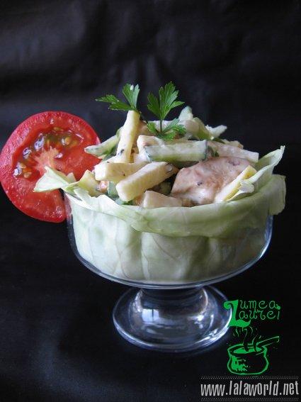 IMG 9720 resize Salata din piept de pui cu cruditati